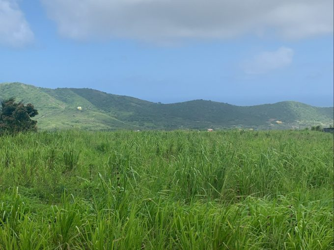 AMAZING HILL SIDE PROPERTY FOR SALE, FOUNTAIN, ST.KITTS